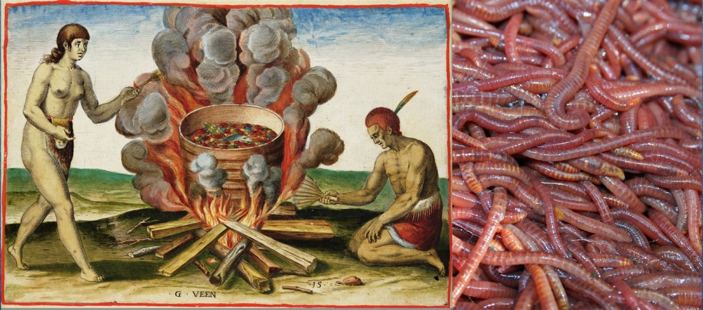 cooking_earthworms